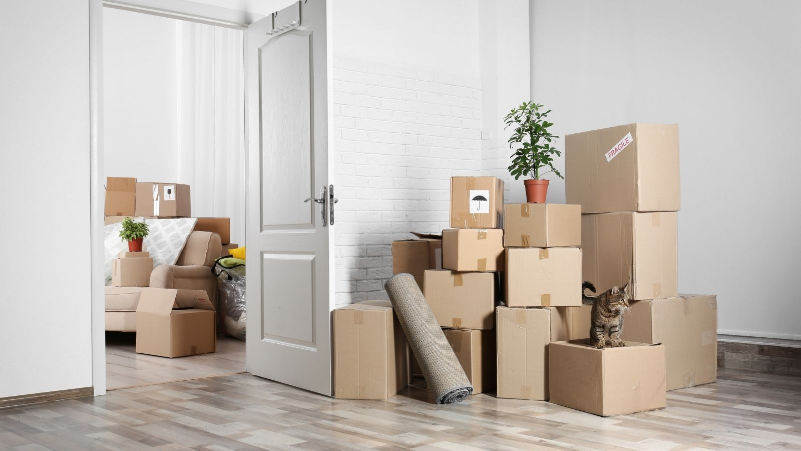 How To Prepare for Professional Moving Services
